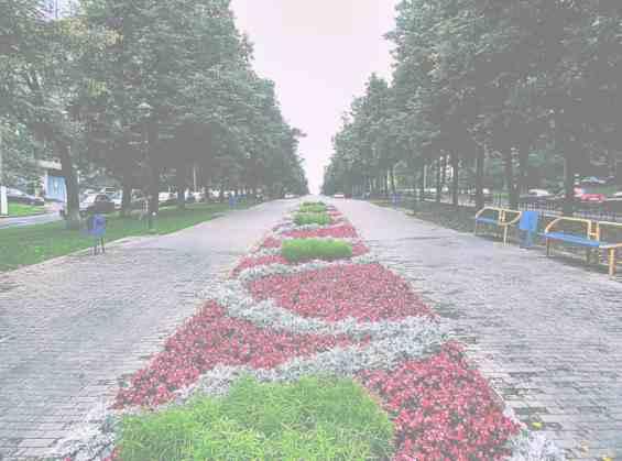 Москва Кунцевская ул